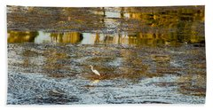 Evening Reflections In Carmel Beach Sheet by Venetia Featherstone-Witty