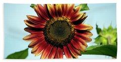 Evening Sun Sunflower 2016 #1 Beach Sheet by Jeff Severson