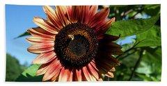 Evening Sun Sunflower 2016 #2 Beach Sheet by Jeff Severson