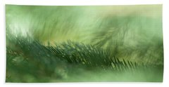 Beach Towel featuring the photograph Evergreen Mist by Ann Lauwers