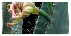 Every Cactus Flower Has It's Thorns  Beach Towel