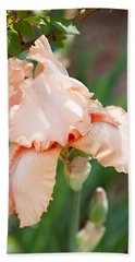 Beach Towel featuring the photograph Everything Is Peachy by Sherry Hallemeier