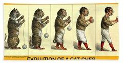 Evolution Of A Cat-cher Beach Towel