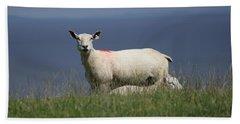Ewe Guarding Lamb Beach Towel