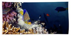 Exciting Red Sea World Beach Sheet