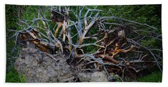 Exposed Roots Beach Towel by John Roberts
