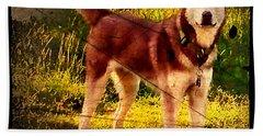 Beach Towel featuring the photograph Expressive Mixed Media Husky A4116 by Mas Art Studio