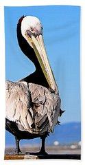 Beach Towel featuring the photograph Eye Contact by AJ Schibig