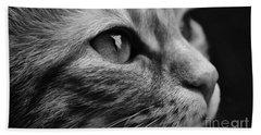 Eye Of The Cat Beach Towel
