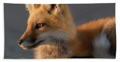 Beach Towel featuring the photograph Eye Of The Fox by Bill Wakeley