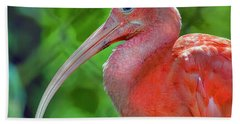 Eye Of The Ibis Beach Towel