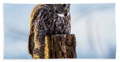 Eye On The Prize - Great Gray Owl Beach Sheet