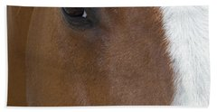Eye On You Horse Beach Sheet