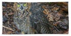 Eye To Eye With Owl Beach Towel by Tom Claud