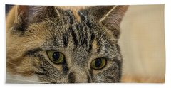 Eyes For You Beach Towel
