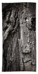 Beach Towel featuring the photograph Face In A Tree by JoAnn Lense
