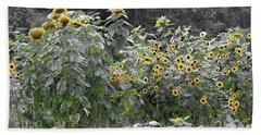 Faded Sunflower Garden Beach Towel
