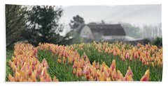 Faded Tulip Barn Beach Towel
