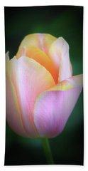 Fairy Tale Tulip Beach Sheet