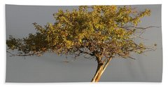 Fall At The Crabapple Tree Beach Towel