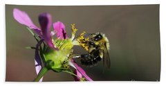 Beach Towel featuring the photograph Fall Bumblebee   by Yumi Johnson
