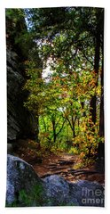 Fall Color Lights Up The Trail Beach Towel by Barbara Bowen