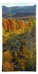 Fall Colors At Aspen Canyon Beach Towel