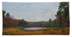 Fall Colors At Gladwin 4459 Beach Towel