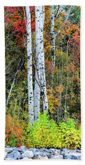 Beach Towel featuring the photograph Fall Colors by Bryan Carter