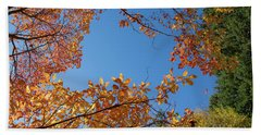 Fall Colors In Hoyt Arboretum Beach Towel