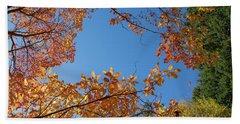 Fall Colors In Hoyt Arboretum Beach Sheet