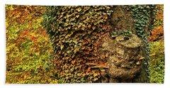 Fall Colors In Nature Beach Towel