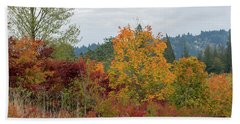 Beach Towel featuring the photograph Fall Colors In Oregon by Jit Lim