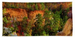 Fall Colors In The Canyon Beach Towel by Barbara Bowen