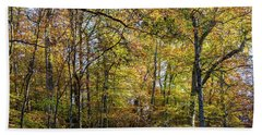Fall Colors Of Rock Creek Park Beach Sheet