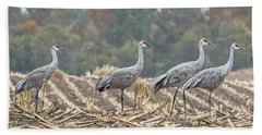 Fall Cranes 2016 Beach Towel by Thomas Young