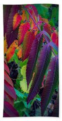 Beach Towel featuring the photograph Fall Feathers by Kendall McKernon