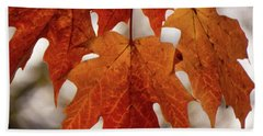 Fall Foliage Beach Sheet by Kimberly Mackowski