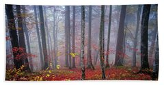 Beach Towel featuring the photograph Fall Forest In Fog by Elena Elisseeva
