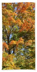 Beach Towel featuring the photograph Fall Gradient by William Selander