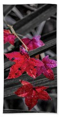Fall In Louisiana Beach Towel by Andy Crawford