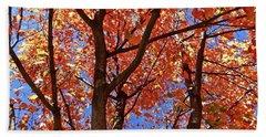 Fall Maple Beach Towel