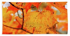 Fall Maple Leaf Beach Towel