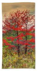 Fall Painting Beach Towel by Skip Tribby