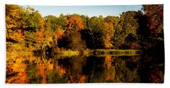 Beach Towel featuring the photograph Fall Reflections by Donna Lee