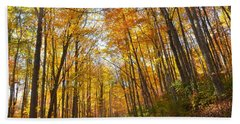 Fall Road Beach Towel