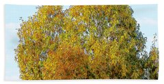 Fall Tree Beach Towel
