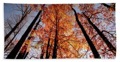 Beach Towel featuring the photograph Fall Trees Sky by Meta Gatschenberger