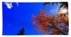 Fall Up Beach Towel by Karen Shackles