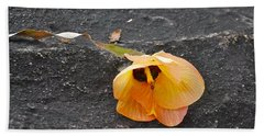 Fallen Flower Beach Towel